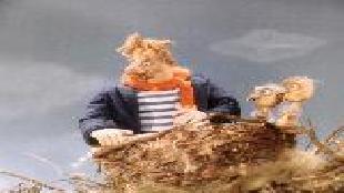 Боцман и попугай Сезон-1 серия 5