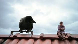 Чудесное путешествие Нильса с дикими гусями Сезон-1 Серия 1. В путь
