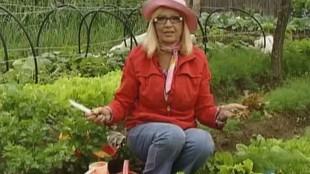 Дачные истории 1 сезон Октябрина Ганичкина рассказывает о салате