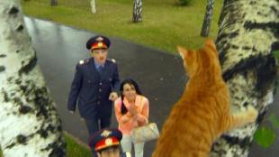 Даёшь молодёжь! Молодые менты Вьюшкин и Омаров Кот на дереве