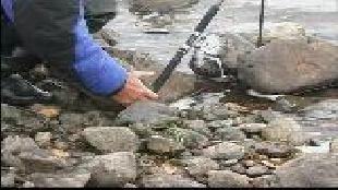 Диалоги о рыбалке Сезон-1 Налим Ленок Сиг. Часть 1