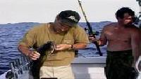 Диалоги о рыбалке Сезон-1 Троллинг. Ладога