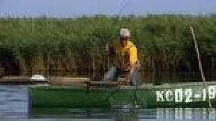Диалоги о рыбалке. Народный проект Сезон-1 Краснодар. Соревнования