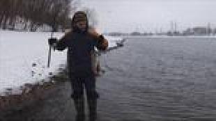 Диалоги о рыбалке. Народный проект Сезон-1 Окунь зимой на спиннинг