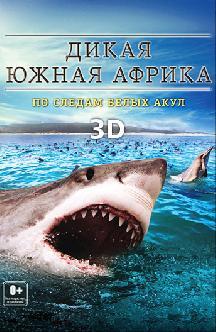 Смотреть ДикаяЮжная Африка: По следам белых акул