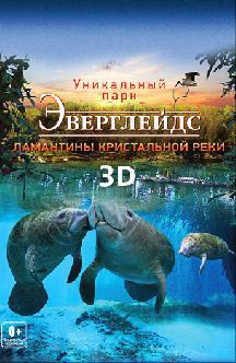 Смотреть Эверглейдс 3D: Ламантины Кристальной реки