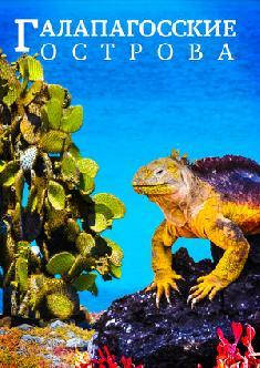 Смотреть Галапагосские острова
