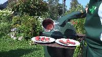 Каба4ок Сезон-1 Керамический гриль Big Green Egg, заезд второй, часть вторая
