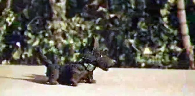 Смотреть Карандаш и Клякса – веселые охотники