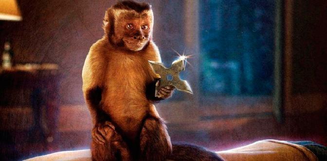 Смотреть Кто твоя обезьянка?