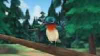 Медведи-соседи Сезон-1 Сердитая птичка