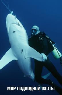 Смотреть Мир подводной охоты