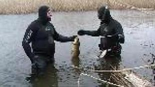 Мир подводной охоты Сезон-1 В дельте Волги с Макаревичем