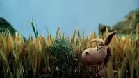 Мультфильмы киностудии Арменфильм Мультфильмы киностудии Арменфильм Даровитый ослик