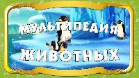 Мультипедия тетушки Совы Русская мультипедия Русская мультипедия - Слон