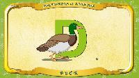 Мультипедия животных Английский алфавит Английский алфавит - Letter D - Duck