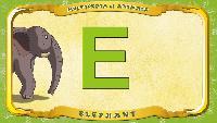 Мультипедия животных Английский алфавит Английский алфавит - Letter E - Elephant
