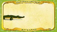 Мультипедия животных Польский алфавит Польский алфавит - Litera A - Aligator