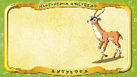 Мультипедия животных Польский алфавит Польский алфавит - Litera A - Antylopa