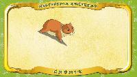 Мультипедия животных Польский алфавит Польский алфавит - Litera C - Chomik