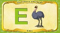 Мультипедия животных Польский алфавит Польский алфавит - Litera E - Emu