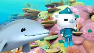 Октонавты Сезон-1 Октонавты и спасение острова дельфинами