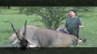 Основной инстинкт (2009) Сезон-1 Дикая охота в Намибии