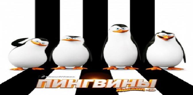 Смотреть «Пингвины Мадагаскара» дождались полного метра