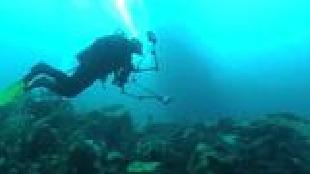 Под водой с... Сезон-1 Байкал. Зимнее сафари