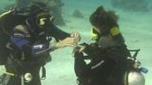 Под водой с... Сезон-1 Обучение дайвингу