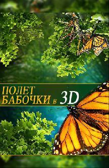 Смотреть Полет бабочки 3D