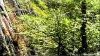 Практики духовно-энергетического самопознания Сезон-1 Чаша Бога