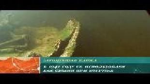 Предельная глубина (2009) Сезон-1 Кормление акул