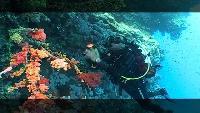 Предельная глубина (2009) Сезон-1 Рэки Красного моря
