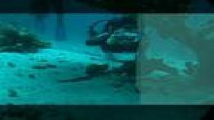 Предельная глубина (2009) Сезон-1 Заповедники Красного моря