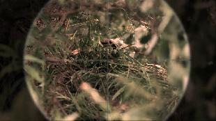 Снайперы: Любовь под прицелом Сезон 1 Серия 6