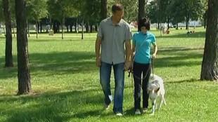 Собака в доме 1 сезон 3 выпуск