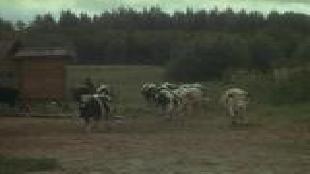 Соль земли Сезон-1 Серия 1