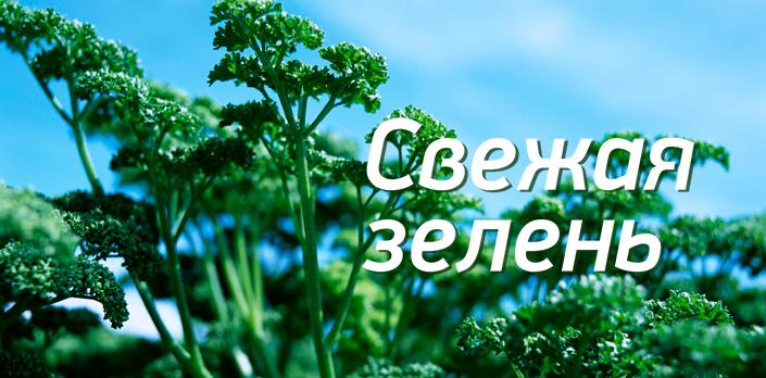 Смотреть Свежая зелень