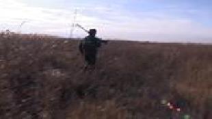 Трофеи Авалона Сезон-1 Охота на фазана (часть 1)