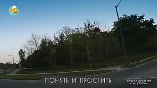 Трололо Сезон-1 Серия 13