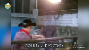 Трололо Сезон-1 Серия 44
