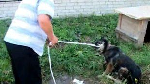 Улетное видео по-русски! 4 сезон 533 выпуск
