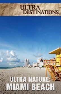 Смотреть Ultra Nature: Miami Beach