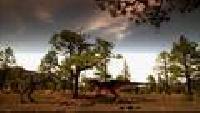 Войны Юрского периода Сезон-1 Охотник на Тираннозавра