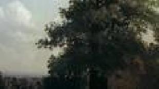 Всемирная картинная галерея Сезон-1 Саврасов Алексей Кондратьевич. Сказка о грусном художнике
