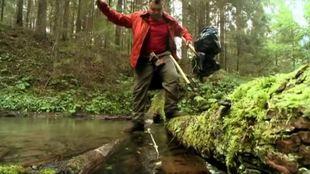 Выжить в лесу 1 сезон 2 выпуск